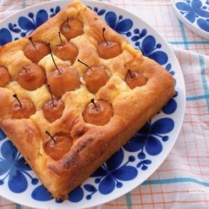 姫リンゴのケーキ///獣医さんへ