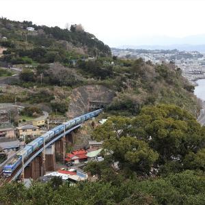 撮影日記 東海道本線 石橋① 251系SVO