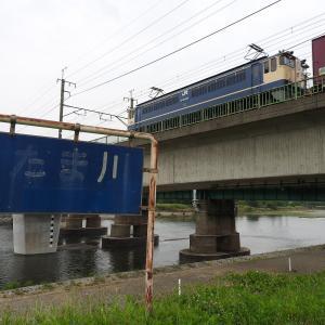 撮影日記 武蔵野南線 多摩川 ニーナ