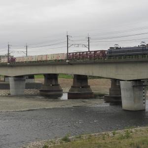 撮影日記 武蔵野南線 多摩川 74レ ニーナ