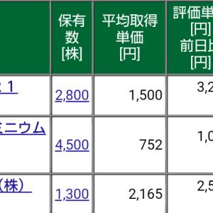 保有株式と資産状況☆2021/4/4(日)