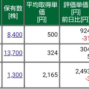 保有株式と資産状況☆2021/5/9(日)