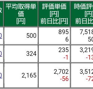 保有株式と資産状況☆2021/6/13(日)