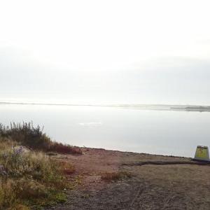 「道の駅ウトナイ湖」朝の景色が神がかりでした。Σ( ̄ロ ̄|||)