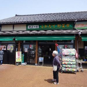 「道の駅神林・穂波の里(新潟)」子供に優しいトイレがありました。