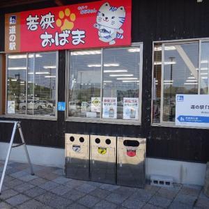 「道の駅若狭おばま(福井県・小浜市)」猫と恐竜の道の駅です。~(=^・ω・^)ノ☆