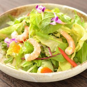 なぜサラダしか食べてないのに痩せないの?その理由を考えて対策をしよう