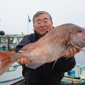 大王崎のマダイ、尺アジ釣り、魚釣りは何時来ても楽しいですね