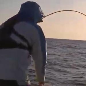 ジャンボアジ釣り