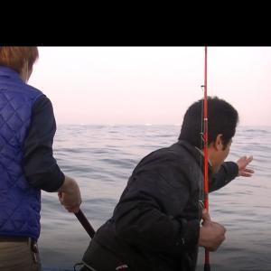 四日市の釣り師たちのマダイ、尺アジ、イサ釣りは絶好調