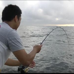 イサギズボ釣り、爆釣