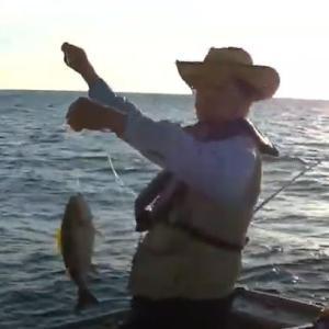 マダイ、イサギ釣り爆釣、志大王崎灯台を背景に