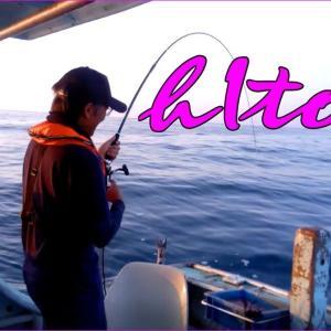 大鯛イサギ釣り爆釣