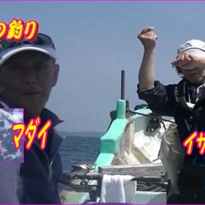 勢志摩のマダイ、イサギ、カサゴ釣り