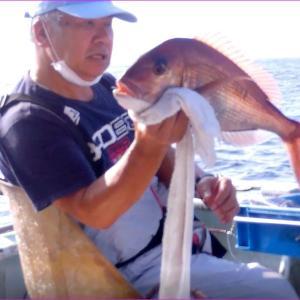 伊勢志摩のマダイ釣り、イサギ釣り爆釣