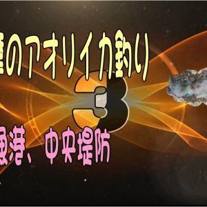 伊勢志摩のアオリイカ釣り