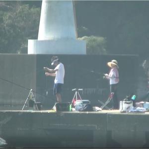 波切港の夫婦釣り、アジ、イワシ、魚のよく釣れる釣り方第1弾