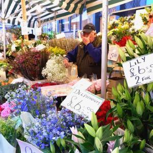 ロンドンで日曜日のみ開催!ローカル感を楽しめるコロンビアロードフラワーマーケットのおすすめ