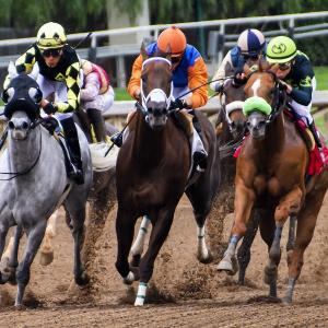 パチンコや競馬はやめよう。ギャンブルで資産形成ができない理由