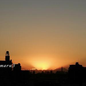 大寒・・・夕陽の美しさと小さな芽に感動