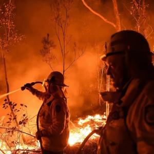 山火事情報⑤ タスマニア州