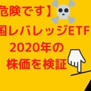 【購入注意】米国のレバレッジETFの2020年のパフォーマンスを検証!