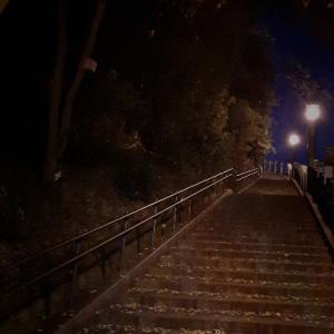 夜神社にお参り
