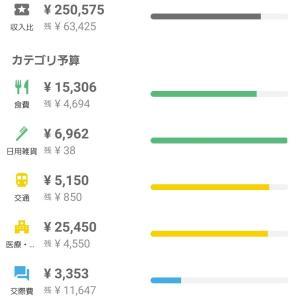 アラフォー女のゆるゆる家計簿【21年8月度】