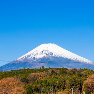 富士サファリパークに行ってきました!