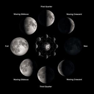 2020年8月19日、新月(獅子座)