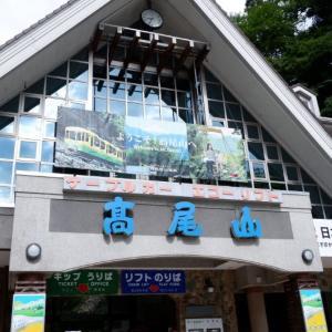 【登山】高尾山に山登り 6号路→山頂→稲荷山コース