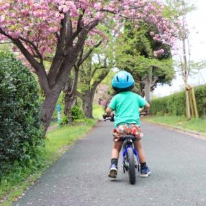 3歳から補助輪なし自転車に乗る方法