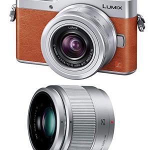 実はパナソニックのカメラ売れてる??もっとエントリー機に力を注ぐべき