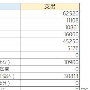 【食費どうなってんの?】今月の家計簿【赤字!】