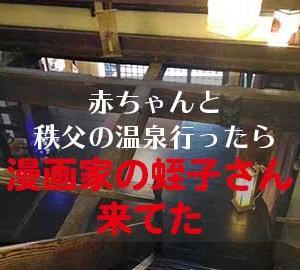 秩父温泉「新木鉱泉旅館」に赤ちゃんと宿泊してきた!感想と口コミ