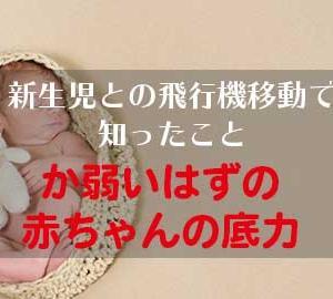 【赤ちゃんと旅行】生後1カ月未満でも飛行機に乗れる?持ち物や注意点