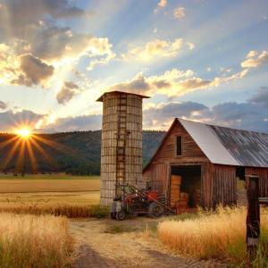 田舎暮らしって魅力的!コロナウイルスで増えてきた地方移住のメリット