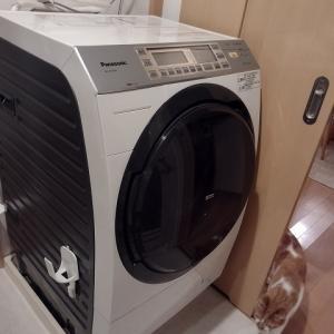ドラム式洗濯機をかさ上げしました