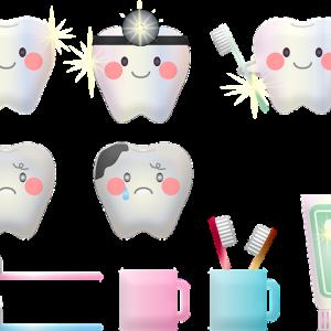 猫の歯周病ほうっておくと命の危機に!!