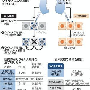 腫瘍溶解性ウィルス療法