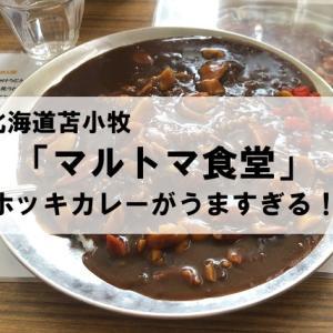 【マルトマ食堂】ホッキカレーが美味しいし海鮮が安い!【食レポ】