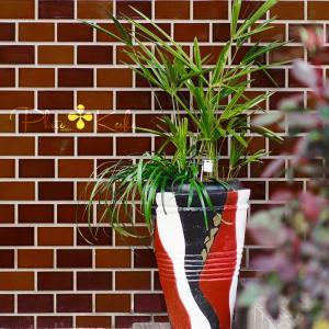 草花の整理と✤新しい花壇作り✤