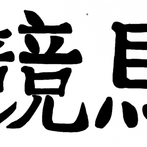 【2019阪神JF】真の怪物は別のところにいた ~レシステンシア~