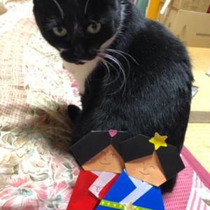 雛祭り猫 すーさん