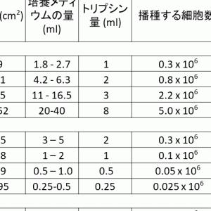細胞培養で有用な数字(培養面積・培地量)とちょっとした注意点