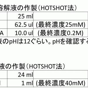 マウスのジェノタイピングで使える、簡単で安いDNA抽出法(HOTSHOT法/アルカリボイル法)