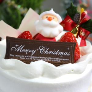 クリスマスケーキにプリンはどう?パステルからなめらかプリンケーキが!