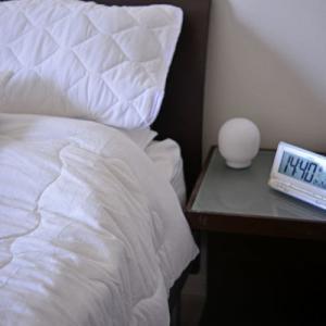 「我が家のベッドルーム 天然素材ひんやりケット」