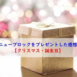 ニューブロックをプレゼントした感想【クリスマス・誕生日】
