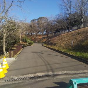 「神の木公園」横浜市神奈川区の高台の野球場がある公園